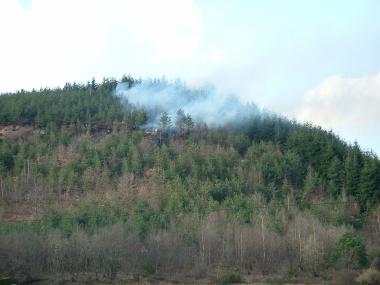 feu de forêt 6 4 09 Lepanges.JPG