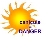 canicule 2.jpg