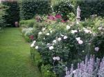 Jardins de l'abbaye Autrey 13.JPG
