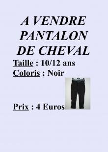 A vendre pantalon de cheval_01.jpg